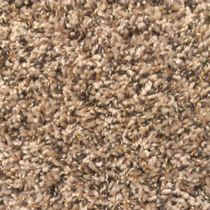 Plush Beige Frieze Carpet