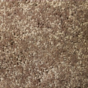 Plush Nylon Dark Beige Carpet