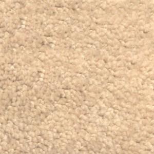 Plush Nylon Light Beige Carpet