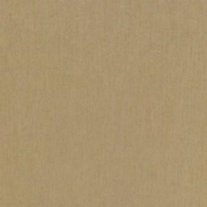 Light-Beige-12-x24-Tile