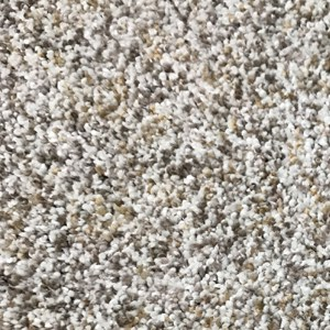Ultra Soft Plush Slippery Rock Carpet