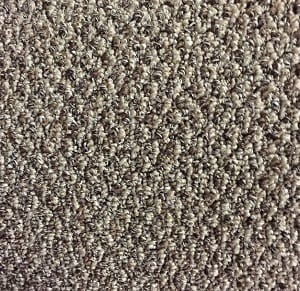 Soft Neutral Berber Stardust Carpet