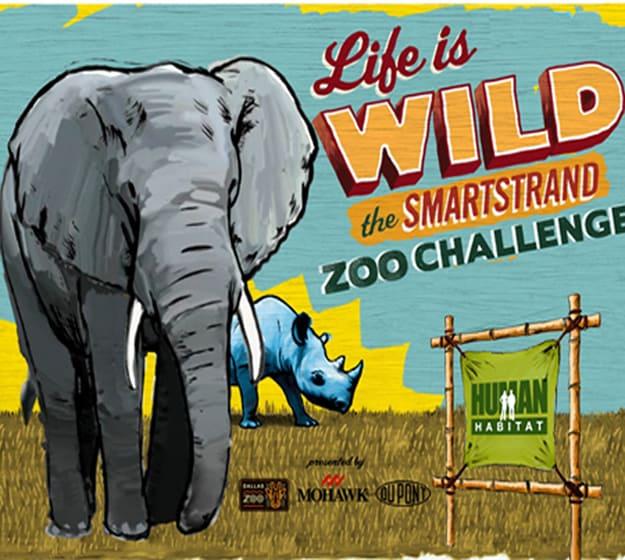 The SmartStrand Carpet Zoo Challenge